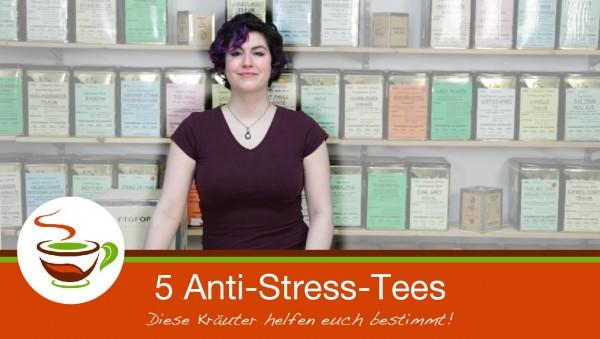 Thumbnail_Youtube_Anti_Stress-02