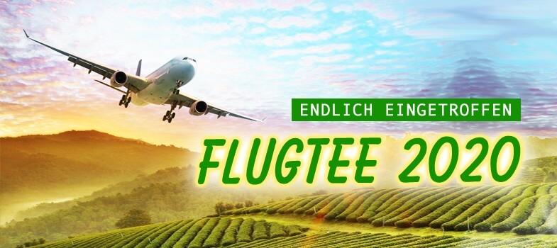 2020-06-Flugtee