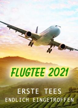 2021-04-Flugtee
